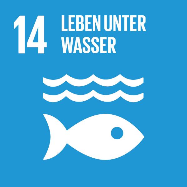 14 Leben unter Wasser