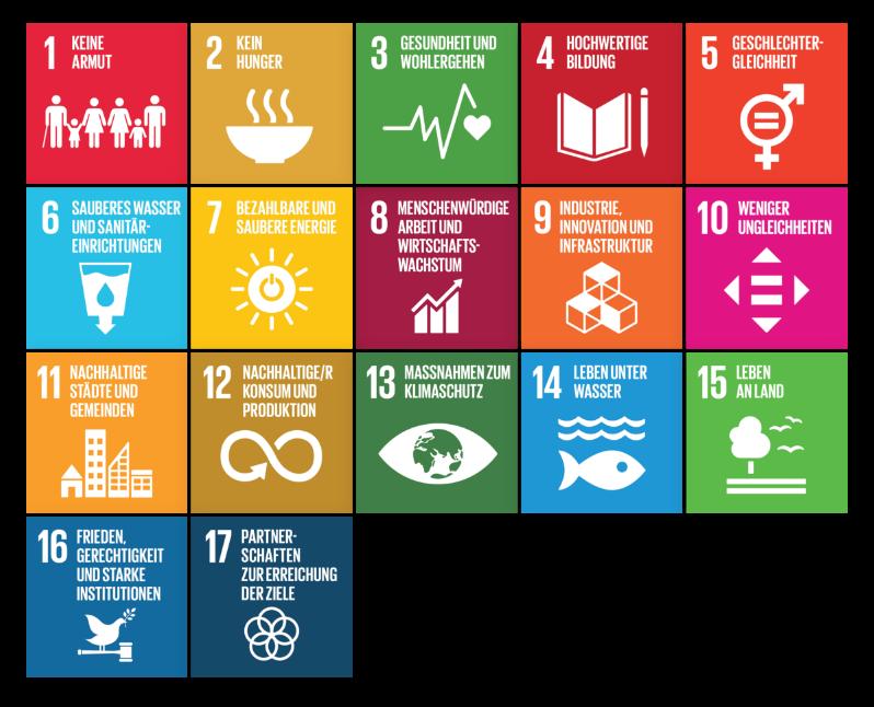 Die Sustainable Development Goals