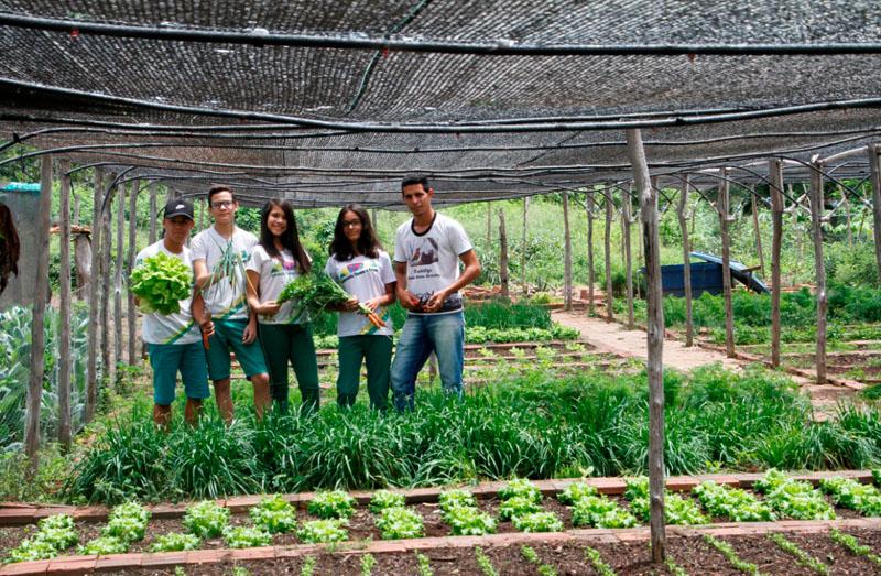 Schulpartnerprojekt Brasilien