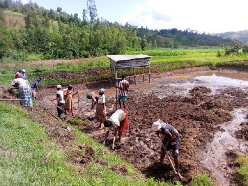 Frauenkooperative Amahoro kämpft gegen verheerende Folgen von Starkregen