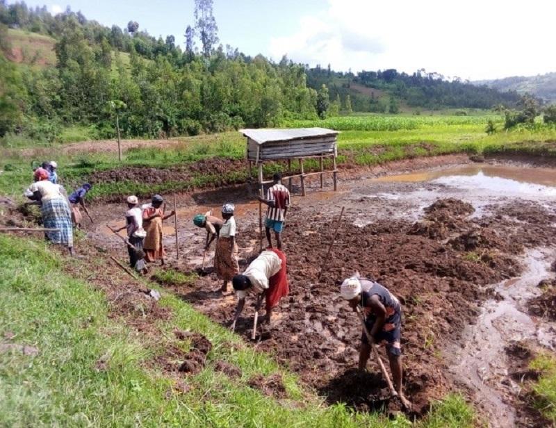 Amahoro - Sanierung Fischteich